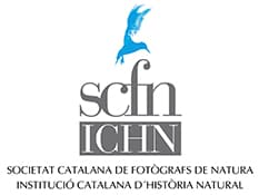 Logo_SCFN